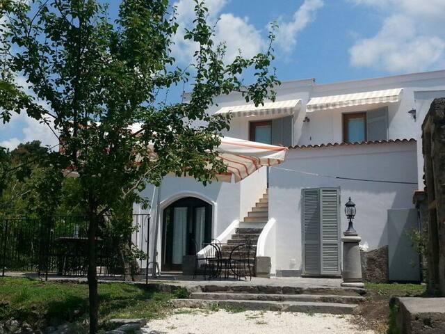 Agriturismo DomusAgricolaeCorallina - Torre del Greco - Bed & Breakfast