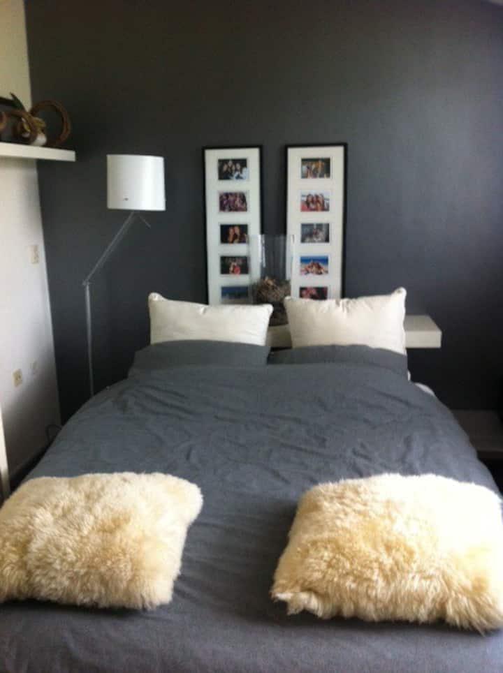 2 Design rooms near Amsterdam