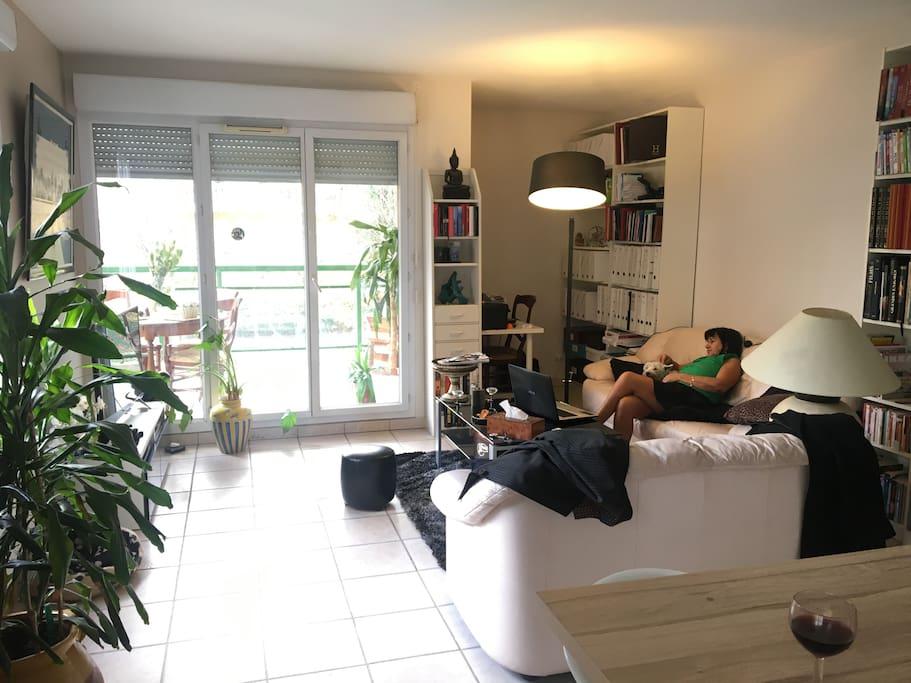 Espace salon, bibliothèque et bureau