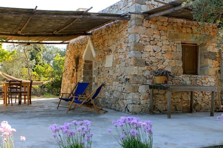Romantico trullo immerso in vigneto - Province of Lecce