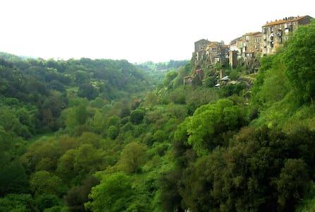 Blera borgo etrusco nel Viterbese - Blera - Apartament