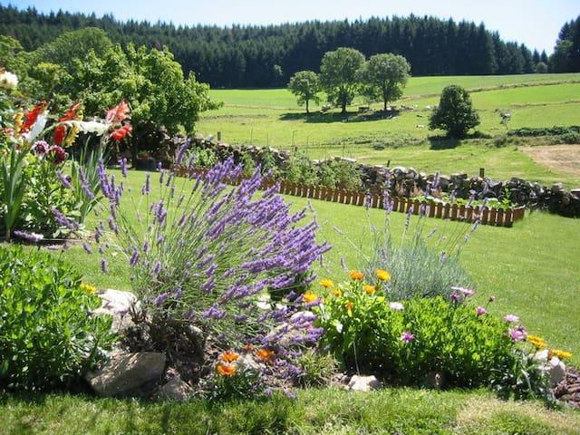 Cadre magnifique en pleine nature - Saint-Bonnet-le-Troncy - Casa