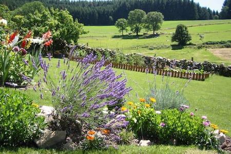 Cadre magnifique en pleine nature - Saint-Bonnet-le-Troncy - House