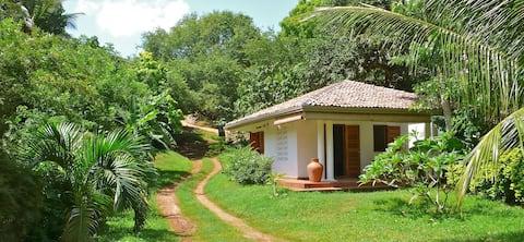 Pequena casa no paraíso