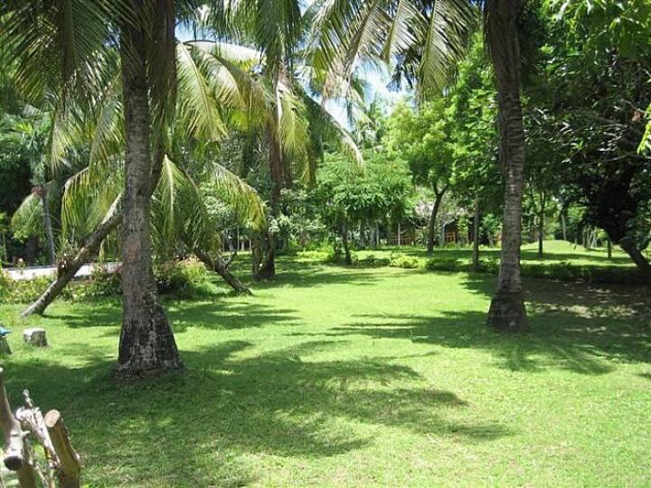 Honeymoon cottage in large garden