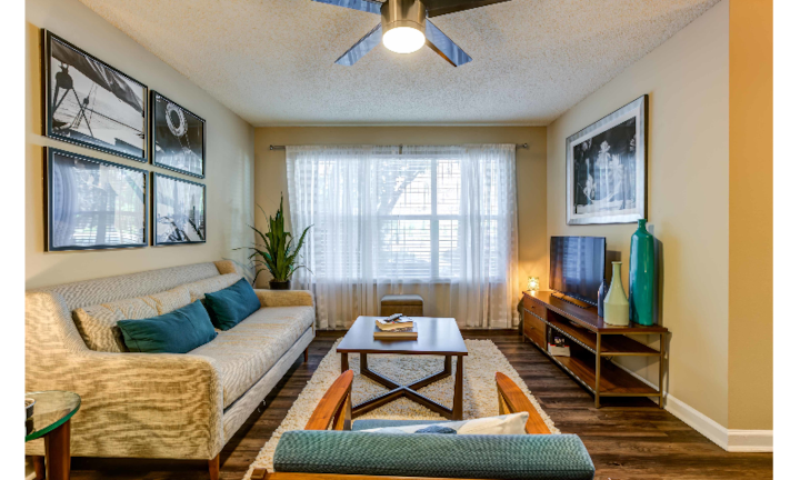 Cozy apartment for you | 1BR in Clearwater