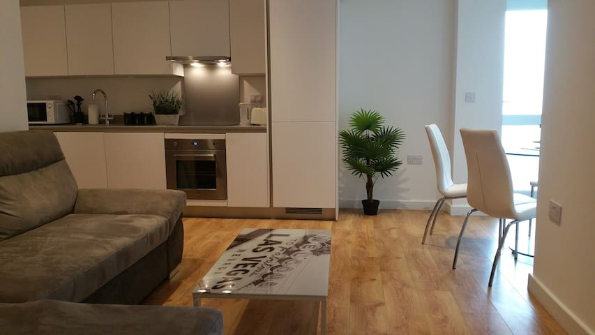 CENTRAL LOCATED APARTMENT IN LONDON WOOLWICH