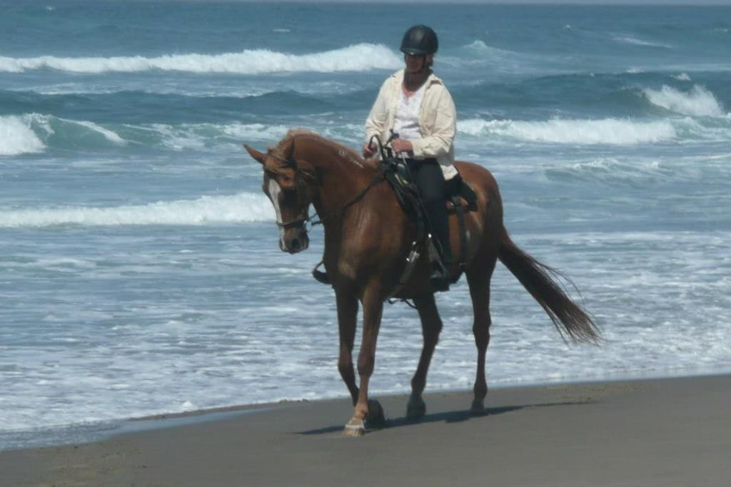 Me and my big guy, riding the beaches of Manzanita, Oregon