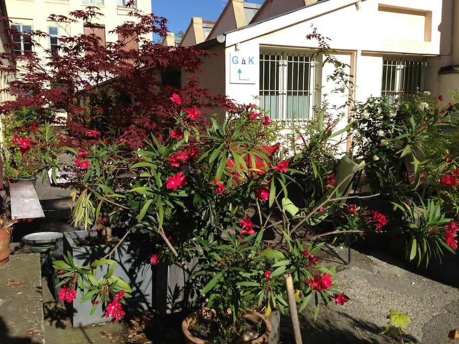coté cour... un espace fleuri pour le petit dejeuner / breakfast can be taken outside