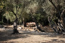Farmhouse in Nature -ET-3025