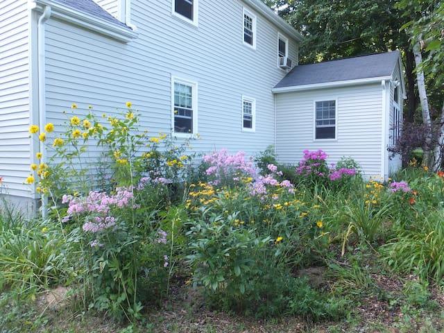 Our garden blooms much of the year.
