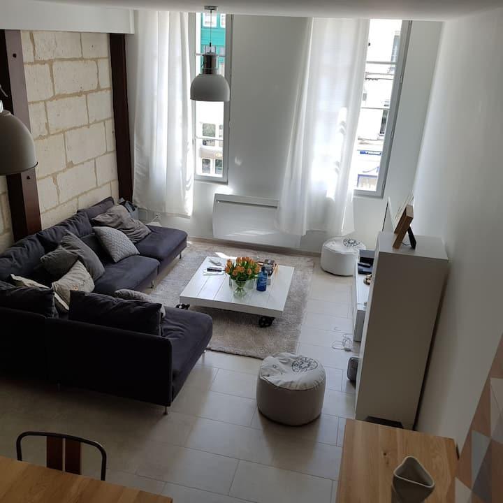 Chambre dans loft plein centre ville de Niort.