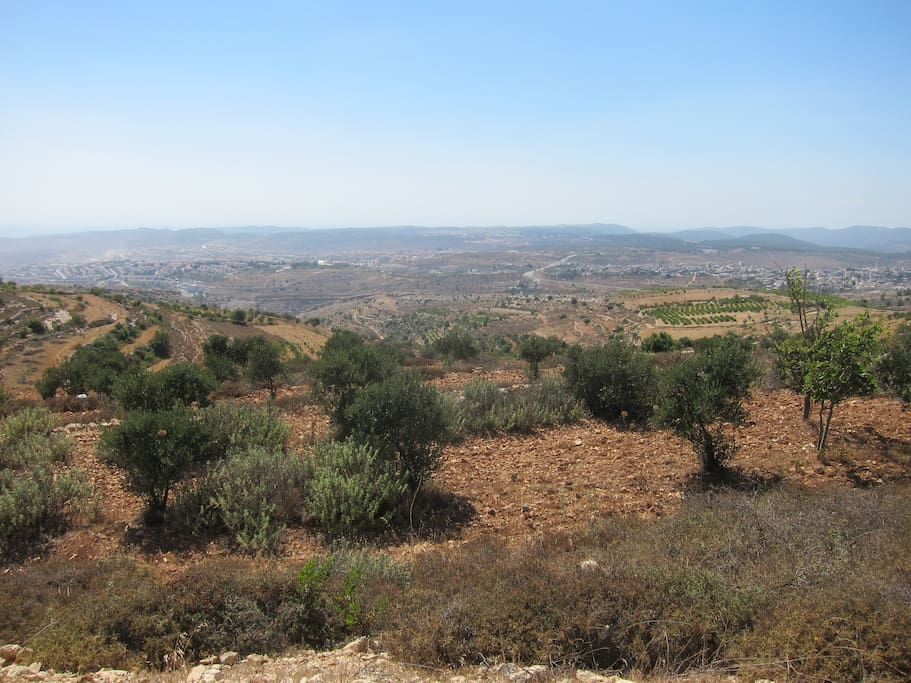 The view from one side of the moshav.