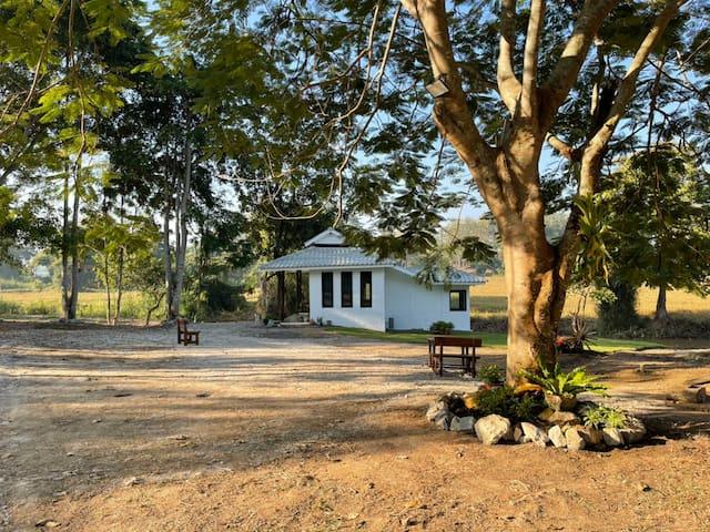 Pa Sak Tong 338, 1BR near Singh Park White Temple