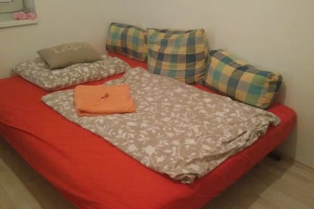Nice room in quiet flat at the edge of town - Vienne - Appartement