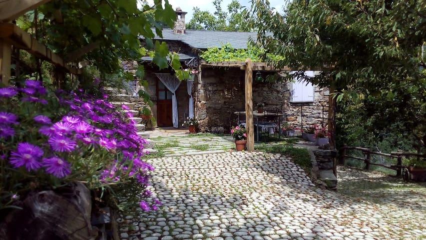 Natura e Relax a Casa Millin CITRA 010005-LT-0001