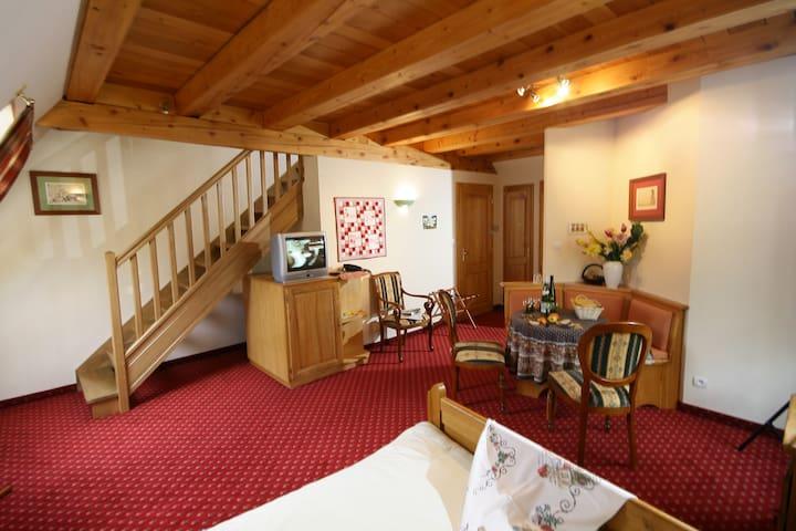 La Cerisaie, chambre Ste Odile - Breitenbach - Bed & Breakfast