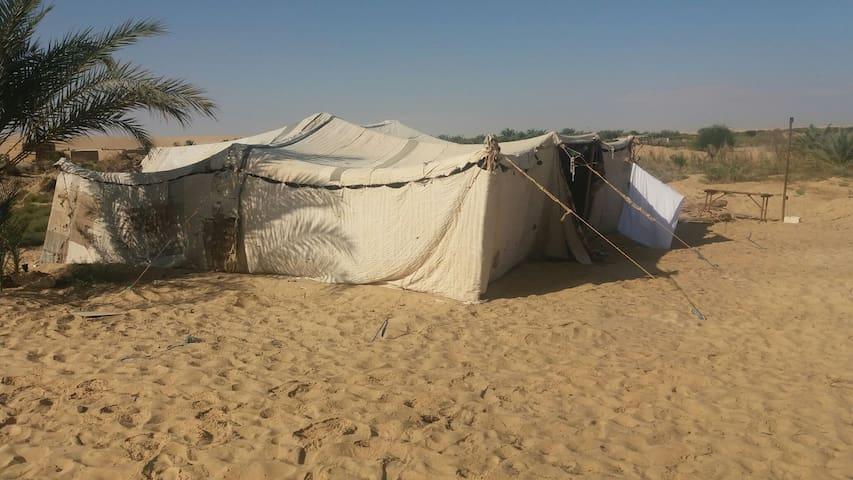Egypt siwa camp osman - Qesm Siwah - Hut