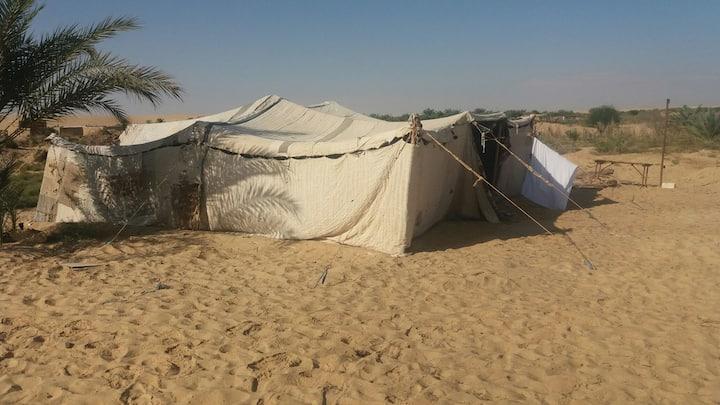 Egypt siwa camp osman
