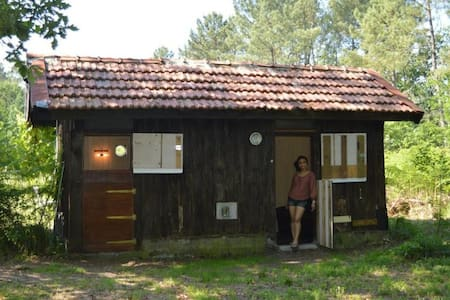 Cabane en forêt (forest cabin) - Onesse-Laharie - กระท่อม
