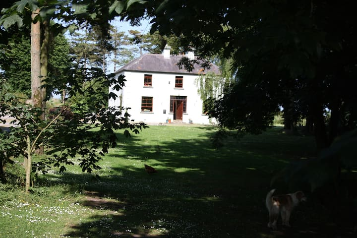 Oldfarm, North Tipperary Twin room - Nenagh - Bed & Breakfast