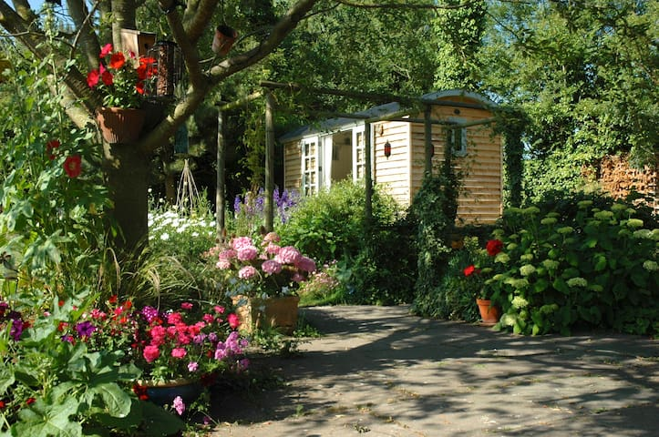 Delightful and Cosy Shepherds Hut - Brightwell cum Sotwell - Bed & Breakfast