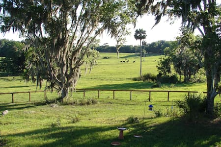 A  Country cottage near Micanopy - Micanopy