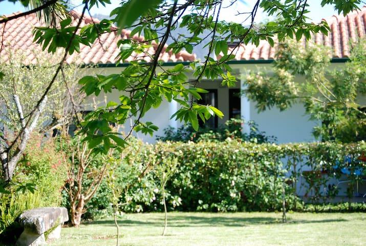 Self-catering Afife  bungalow - Afife - Apartemen