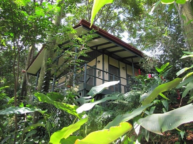 The Quintessential Jungle Escape! - Dominical - Cabaña