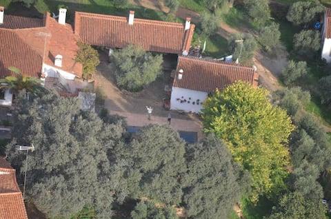 Casa LILA Caldera Vieja