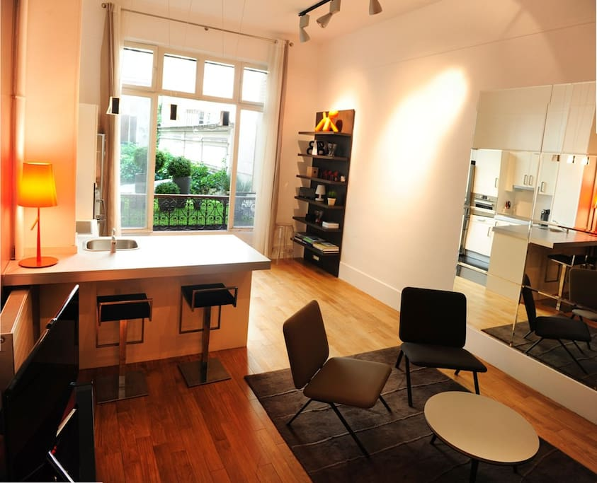 Champs Elysees perfect Big Studio - Apartments for Rent in ...