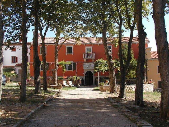 Palazzo apartment SANESTRA - Labin - Apartment