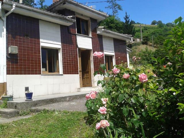 Vive Asturias. Casa con Buhardilla de Ensueño - Malvedo - House