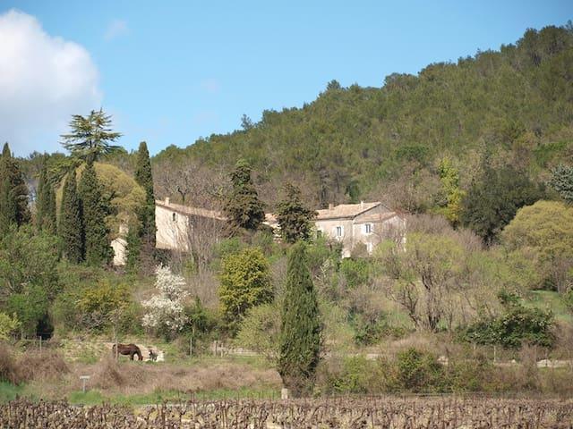 Gite du Mas de Coste - la Ferme - Cannes-et-Clairan - Apartment