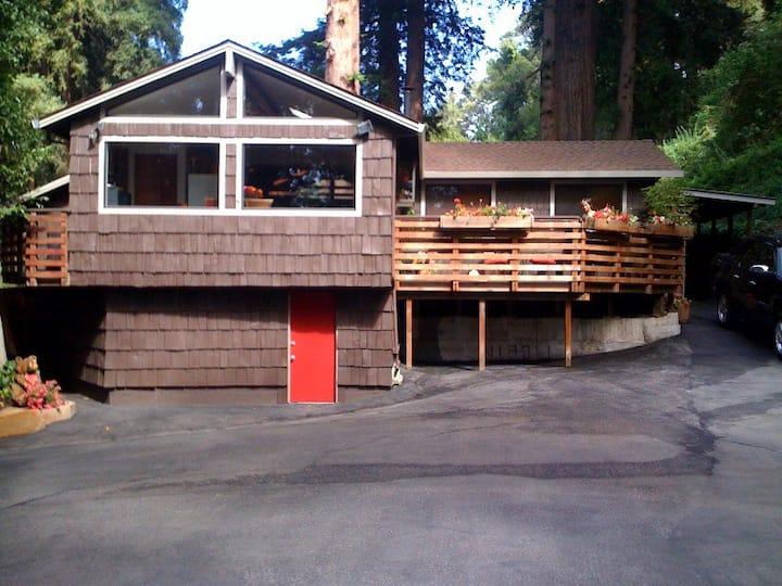 Private Cabin/beach house!