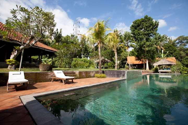 Spectacular Modern Traditional BnB - Denpasar - Bed & Breakfast