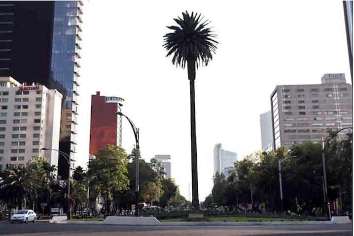 Amaizing apt in downtown closer to Reforma street - Ciutat de Mèxic - Pis