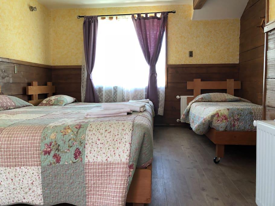 Habitación con cama matrimonial y dos camas adicionales , hermosa vista la volcan .