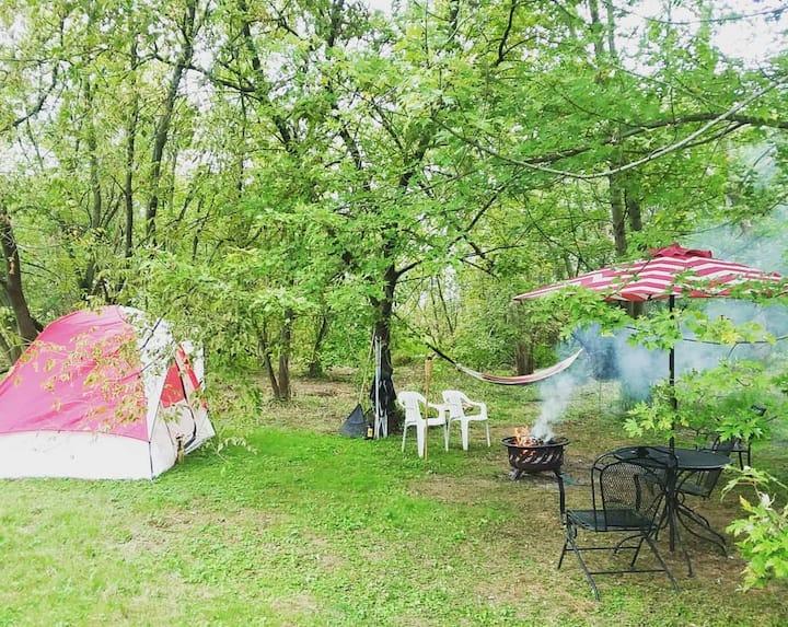 Primitive/off grid campsite next to the creek