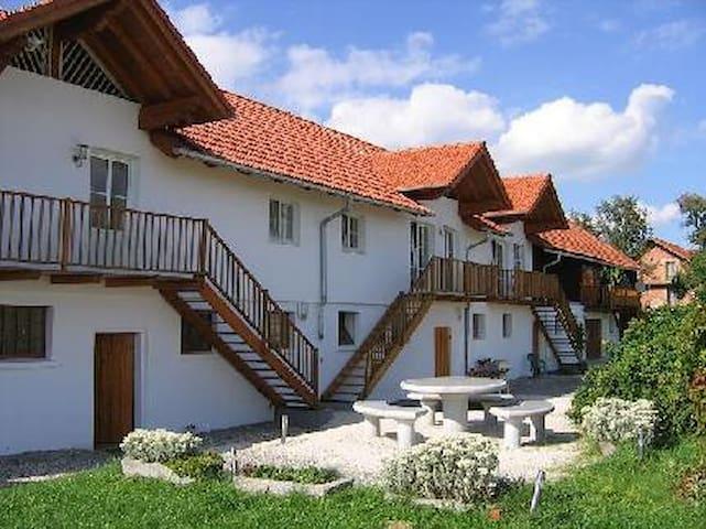 Between Linz-Salzburg-Passau-Ried - Aigelsberg - Apartamento