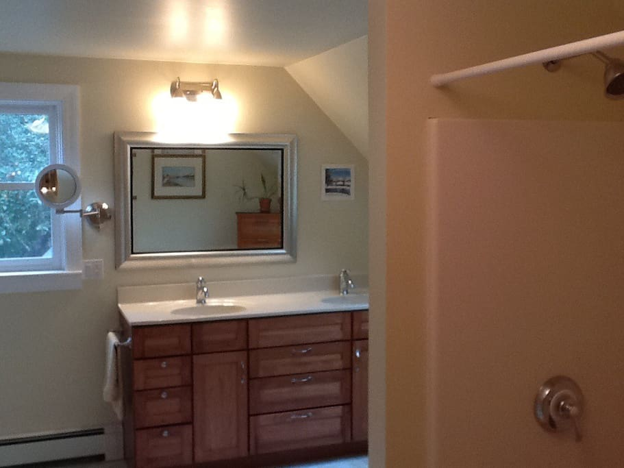 Full bath with double vanity, shower and bath, magnifying mirror and full length mirror, skylight and window overlooking Pappy's Park