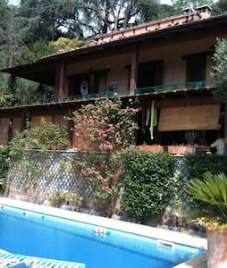wonderful villa with pool an garden - Grottaferrata - Villa