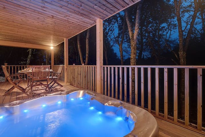 Willow Lodge, South View Lodges, Exeter
