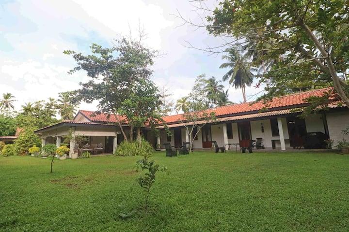 Calamansi Cove House by Yoho