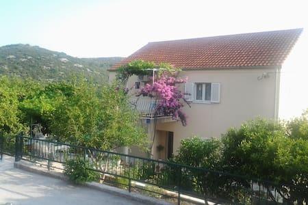 Apartments Jelic 2 - Banići - 公寓