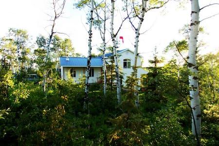 Aspen Hideout - Cabin