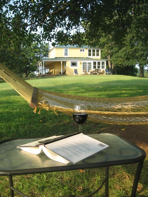 Can't beat a hammock on a beautiful day.