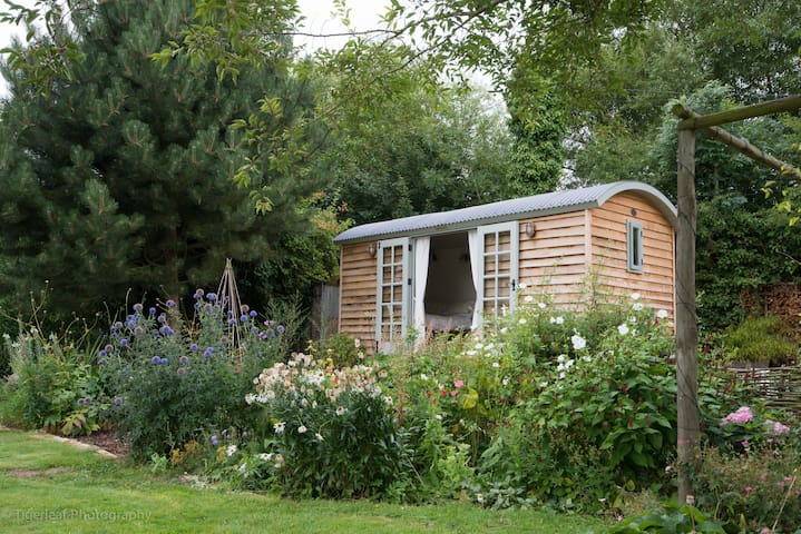 Our Shepherds hut seen from the garden