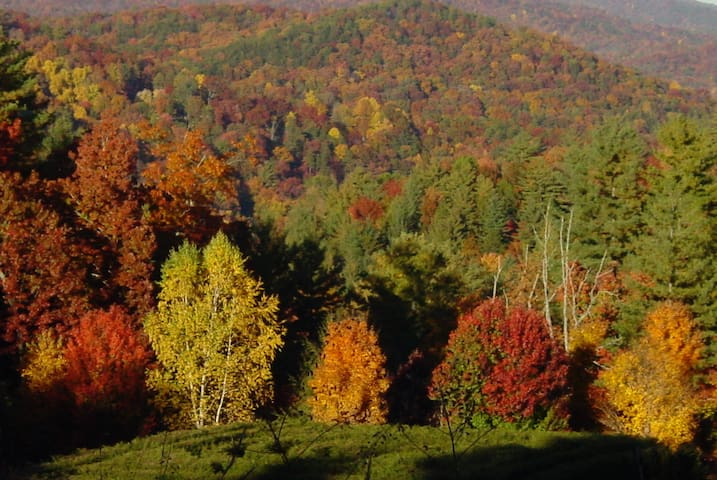 Fall's color from the mountain side walks.