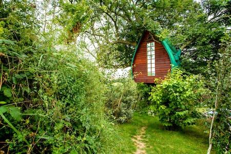Tree Sparrow House, Cornwall.